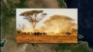 2 - Килиманджаро - Танзания - Африка