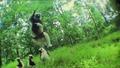 Скачащи лемури