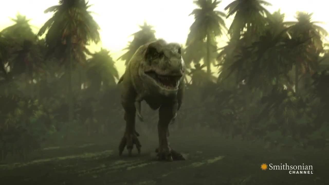 Titanoboa vs t Rex Titanoboa vs T-rex