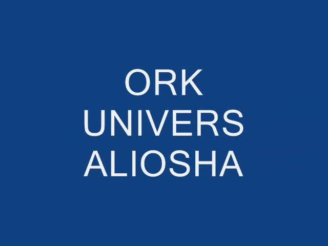 Ork - Univers 2013