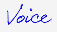 Voice Playlist