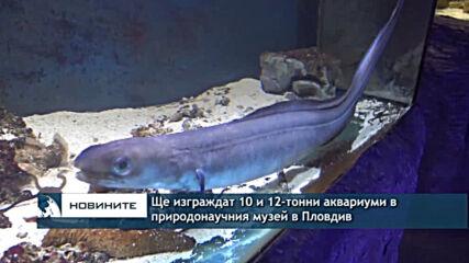 Ще изграждат 10 и 12-тонни аквариуми в природонаучния музей в Пловдив