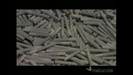 Вредата от цигарите