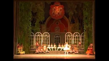 Веса Тонова - Дон Кихот балет