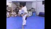 Karate Vs Kungfu