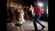 Куче, което танцува меренге