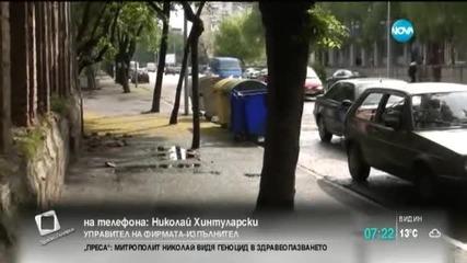 """""""Асфалтират"""" дървета във Видин"""