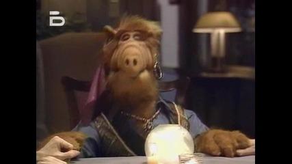 Alf.1x15