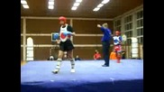 Serbia Open Shampionship Wushu sanda