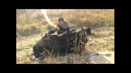 Денят на Дарик и каубоят от Овча Купел