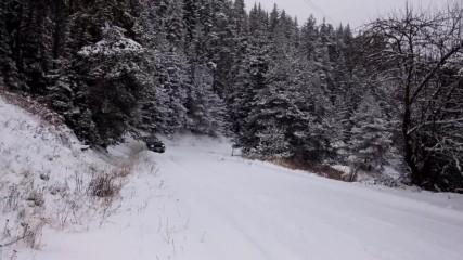 Subaru forester snow