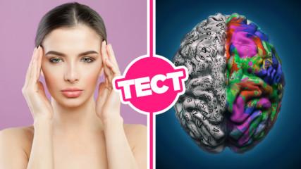 ТЕСТ: Лявата или дясната половина на мозъка ти е по-активна?