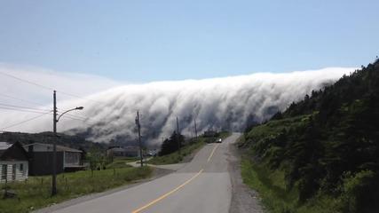 Мъгла образува страхотна гледка в планината.