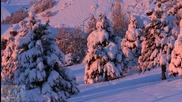 Steve Miller Band - Winter time
