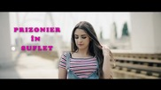 Daiana - Prizonier in suflet // Official Video