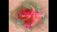 Роза.wmv