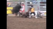 Rodeo Horse Fatally
