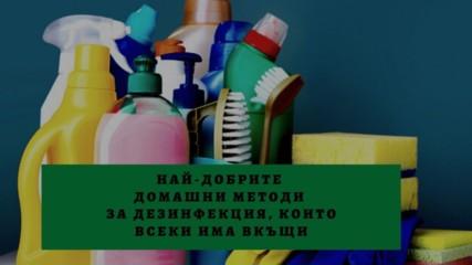 Най-добрите домашни методи за дезинфекция, които всеки има вкъщи