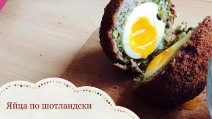 Яйца по шотландски   Kitchen of Tolik
