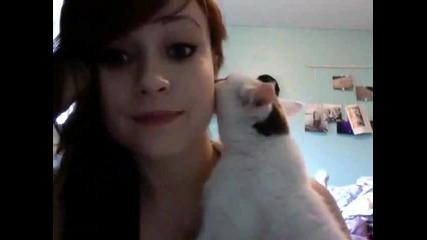 Сладко котенце целува стопанката си