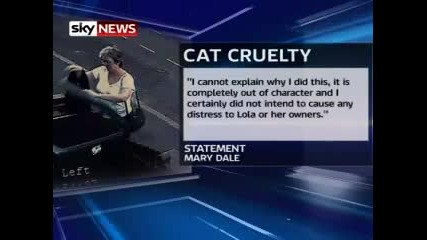 Woman Apologises For Dumping Cat In Bin