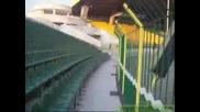 Стадион Нафтех Разходка В Сектор В И Г
