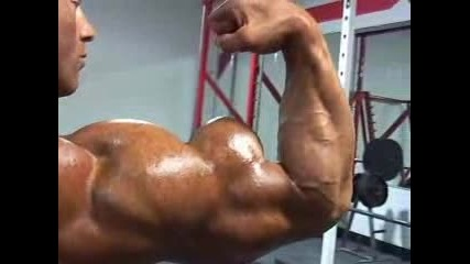як мускул