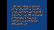Рекорди на Гинес за 2012