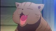 Sakurasou no Pet na Kanojo Episode 5