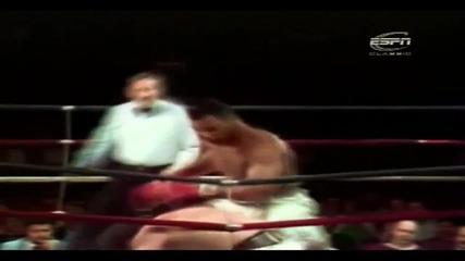 Mike Tyson - Hd Tribute