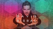David Bisbal - Fiebre( Adam Trigger Remix/ Audio)