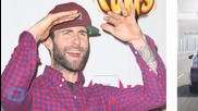 Adam Levine's Mic Hits Fan In Head