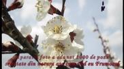 Omar Akram-,,sunt fericita ca sunt Eu,,