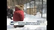 Путин и снежният леопард Монгол – талисман на Зимните олимпийски игри в Сочи през 2014 г.