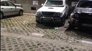 Котки vs. дрон