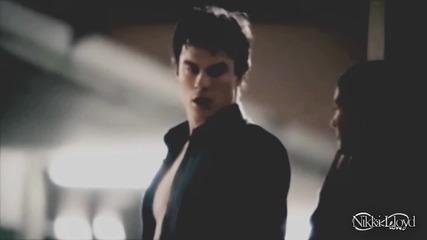Damon & Elena - Animals