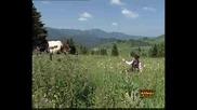 Виевска Фолк Група Конйо Конйо Родопски Зван 2005