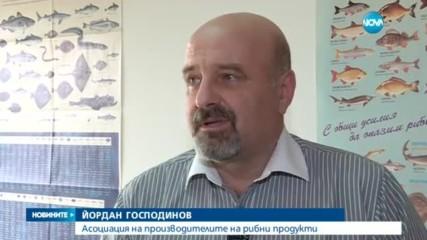 ЗАРАДИ ИЗТОЧЕНИ ЕВРОПАРИ: Белезници за шефа на Агенцията по рибарство