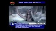 Iz Minusa U Minus 2008 [orginal Video Hq]go Jelena Mrki