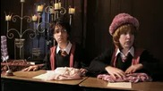 """harry Potter and the order of umbridge"" [ Parody ] The Hillywood show ®"