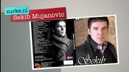 Sekib Mujanovic - Zlatni pecat na svili *2011*