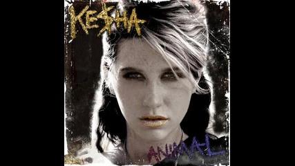 Kesha-we R Whu We R