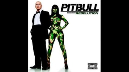 pitbull- i know you want me in