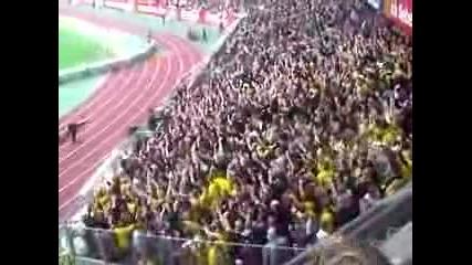 Bvb Dortmund Fans