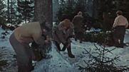 Кариерата на Дима Горин ( Карьера Димы Горина 1961 )