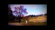 Mort Shuman(sorrow.) - Печаль