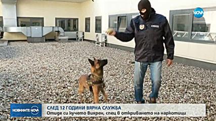 СЛЕД 12 ГОДИНИ ВЯРНА СЛУЖБА: Отиде си кучето Вихрен, спец в откриването на наркотици