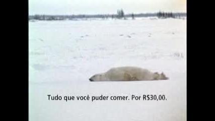 Тази мечка отива на работа рано сутрин в Понеделник - Смях