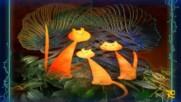 Сладки котки ... ( Vector arts)