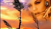Честит Свети Валентин!// Michael Bolton - Said I Love You But I Lied // П Р Е В О Д